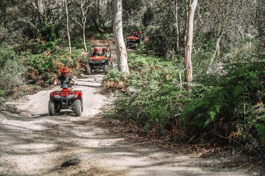 Show item 5 of 11. ATV 2-Hour Adventure: Freycinet National Park
