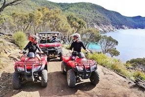 quad bike 2-Hour Adventure: Freycinet National Park