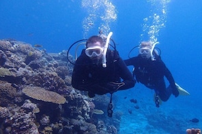 【OKINAWA / Minna Island / Sesoko Island / Manza area】 Boat FUN Diving for C...