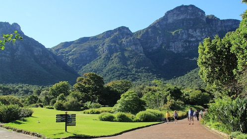 The green and mountainous landscape in South Africa