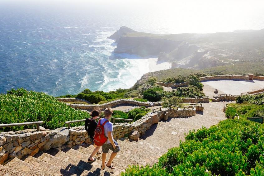 Apri foto 1 di 10. Cape Peninsula Full-Day Tour