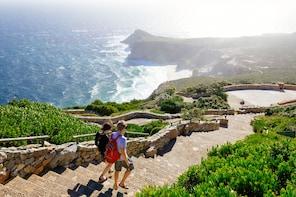 Cape Peninsula Full-Day Tour