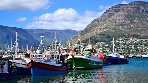 Docked boats at Cape Point in South Africa