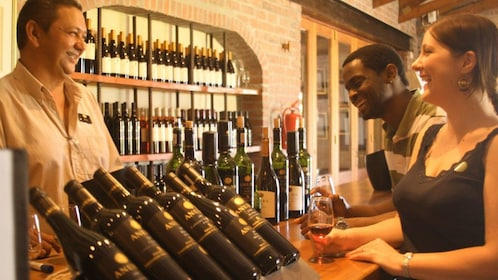 Wine tasting at the vineyard in South Africa