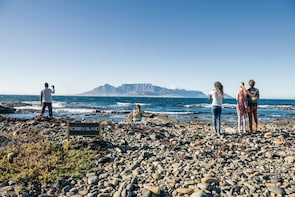 Robben Island & City Centre Full-Day Tour