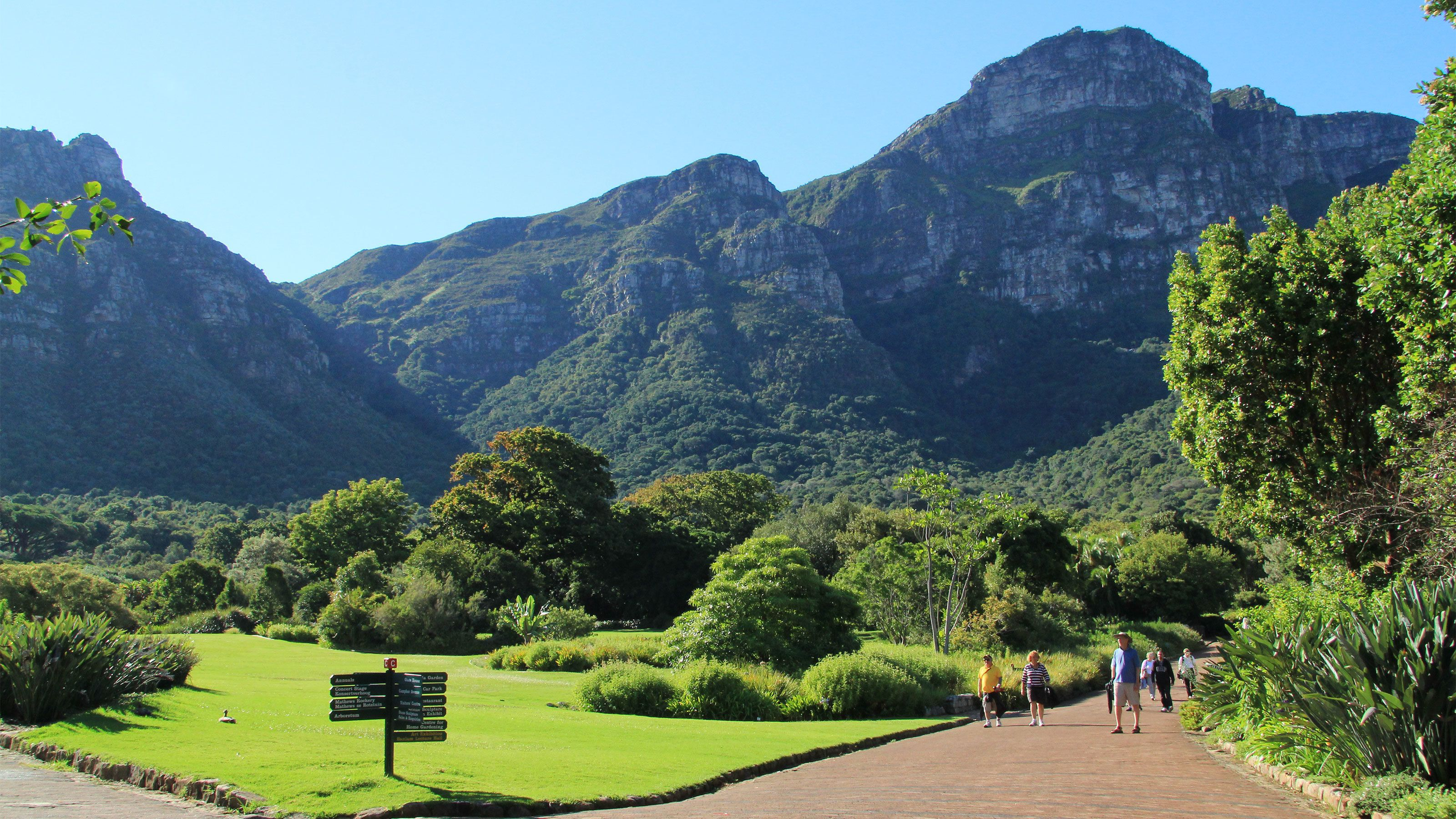 The green and mountainous landscape in Cape Town