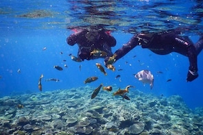 【OKINAWA / Minna Island / Sesoko Island】 Boat Snorkeling Course (1site) for...