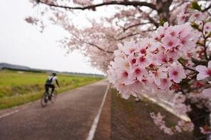 Tsukuba Countryside Cycling Tour