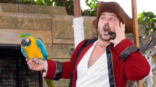 a man dressed as a pirate with a parrot at Marineland