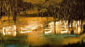 Visite d'une journée complète des grottes du Drach
