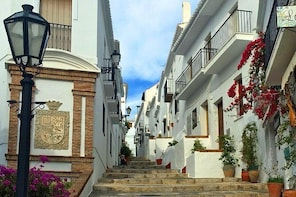 Trip to Frigiliana and El Acebuchal - Small group with lunch included