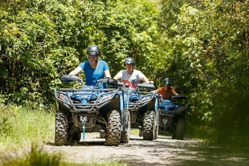 Show item 3 of 5. Quad Bike - Farm Forest Ride