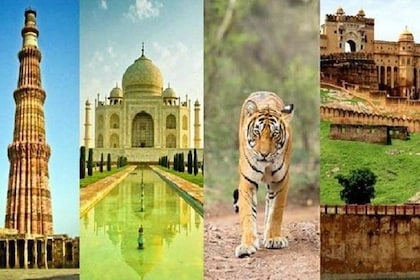 Private 6 Days Golden Triangle Delhi Agra Jaipur with Ranthambore National Park