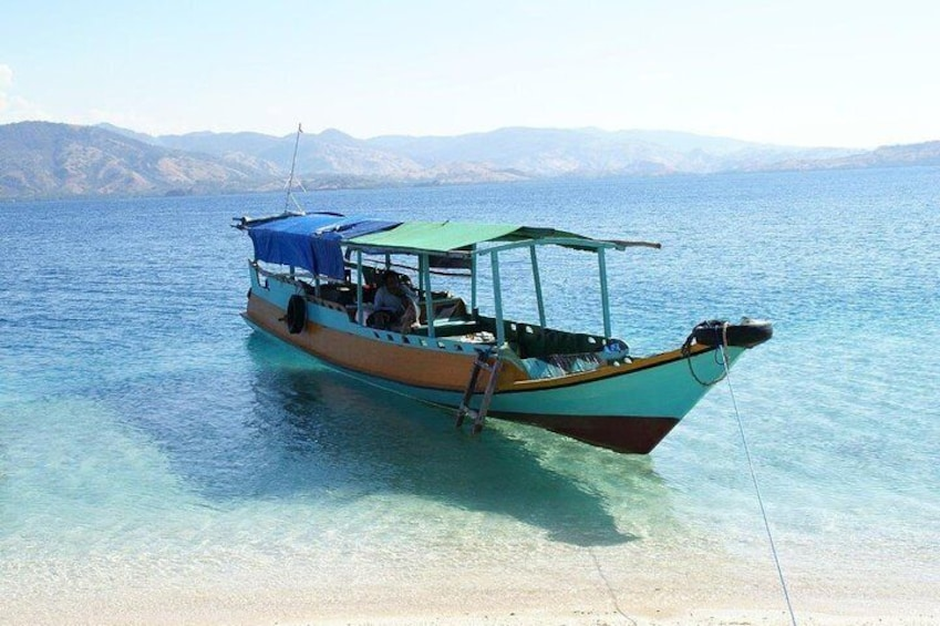 Show item 3 of 15. Komodo island 2 days - 1 night