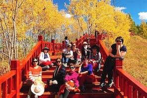 Grand Inner Mongolia Adventure- Hailar, Enhe, Shiwei, Erguna, Manzhouli, Ae...