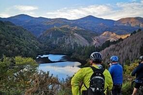 Electric Mountain Bike Tours, Rentals & Trail Adventures