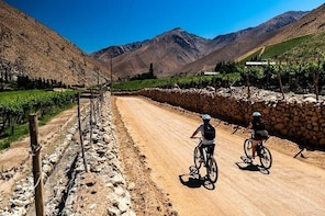 Elqui Valley by bike