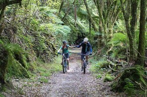 Timber Trail Mountain Bike 2 Day, 1 Night Package