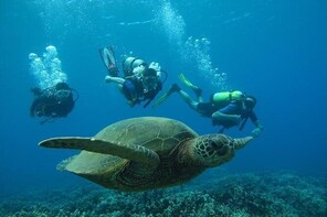 Discover Maui Scuba Diving for Beginners