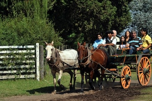 Gaucho Party in Don Silvano with tradicitional lunch
