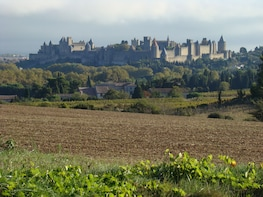 Toulouse to Carcassonne and Albi : Private Sightseeing Tour