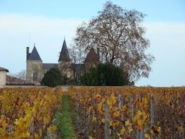 Bordeaux: Medoc & St Emilion Wine Tasting/Sightseeing Tour