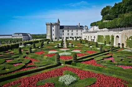 Loire Valley Castles Private 1-Day Tour from Paris by Train