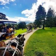 Killarney Jaunting Car Tour - Ross Castle