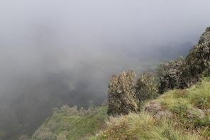 2 Nights / 3 Days Visiting Simien Mountain Treeking