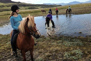 Horse Riding Tour to the Glacier River Delta with Waterfall