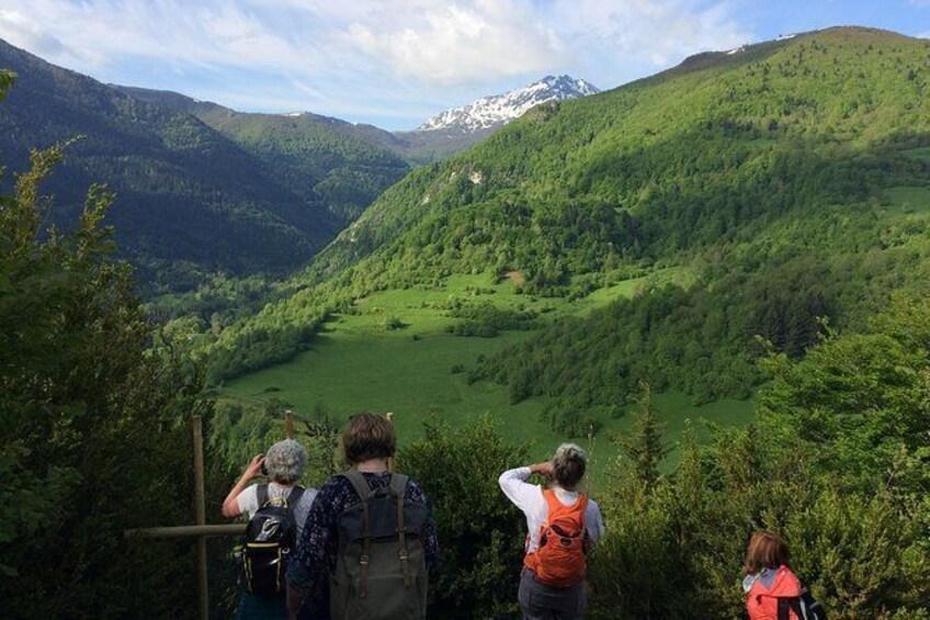 Show item 1 of 20. Day Tour to Mirepoix, Montségur, Foix. From Carcassonne