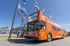 Hop-On Hop-Off Tours (City Tour & Sausalito & Night Tour)