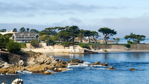 Rocky coast and cypress trees in Monterey