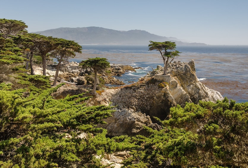 Show item 3 of 8. Monterey, Carmel & Pacific Coast Highway - Full Day Tour