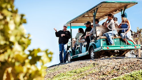 Tour guide and group on a tram in a vineyard