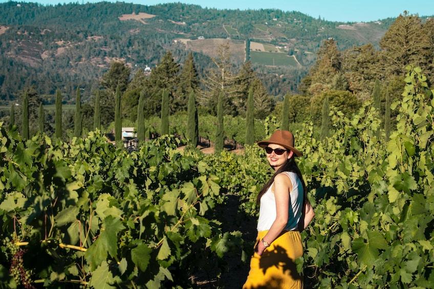 Charger l'élément 5 sur 10. Napa & Sonoma World Class Sustainable Wine Tour