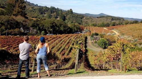 Couple at vineyard in California wine country