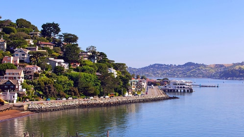 Shoreline in Sausalito