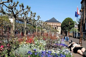Strasbourg The Best of the Alsace Capital Walking Guided Tour