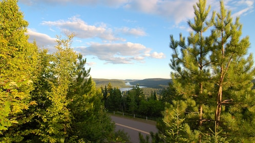 Wide shot through evergreens in the Laurentian Mountains