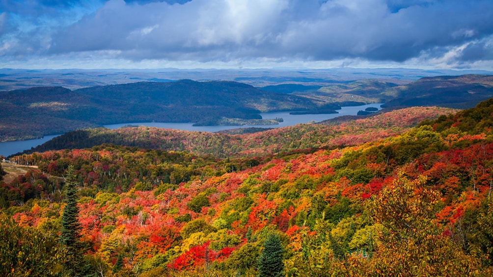 Foto 1 von 5 laden panoramic shot across the Laurentian Mountains showing red, gold and orange foliage
