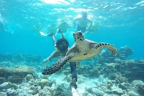 4-Night Maldives Guided Local Experience from Male' Airport