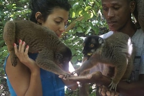 To discover Madagascar with MADA ABC TOURS, let us an opportunity to serve ...