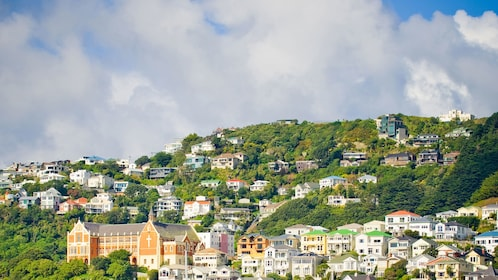 hillside with houses