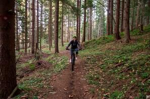 Trebevic Olympic Mountain Biking tour