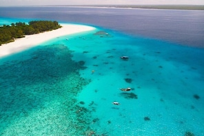 Snorkelling at Mnemba Atoll