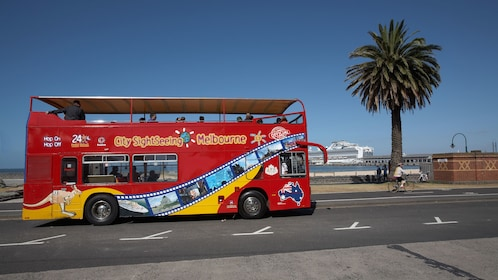 Hop-On Hop-Off Bus Tour by City Sightseeing in Melbourne