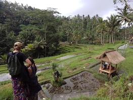 A day tour to the most visited of Ubud Bali