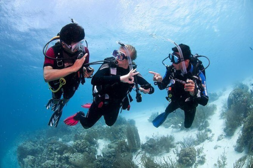Show item 1 of 18. PADI Advanced Open Water Diver Course