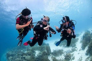 PADI Advanced Open Water Diver Course Anilao Batangas